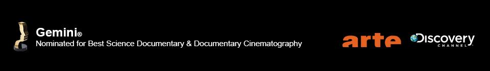 Dino Mummy Logos