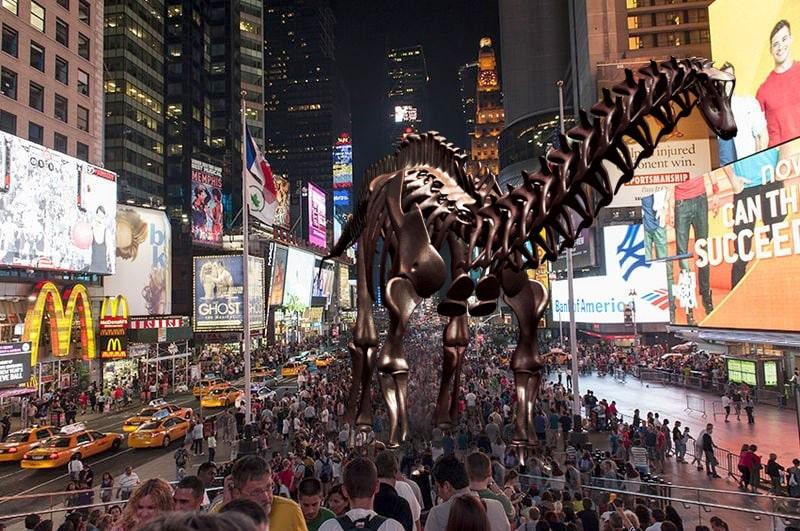 MAXIMUS Skeleton Display